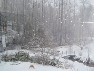 03-01-09-snow, around 4 p.m.